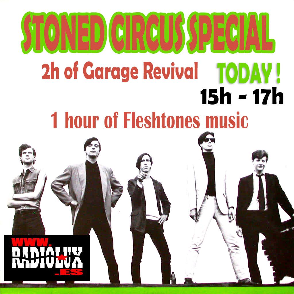 garage-revival-special-fleshtones